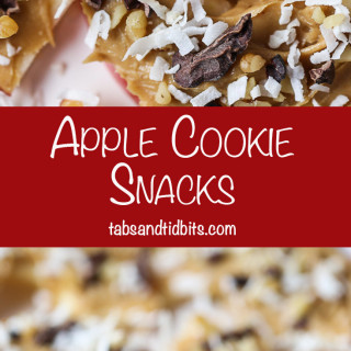 Apple Cookie Snacks - Apple Slices covered with peanut butter, nuts, cacao nibs & coconut! A non-boring and healthy snack!