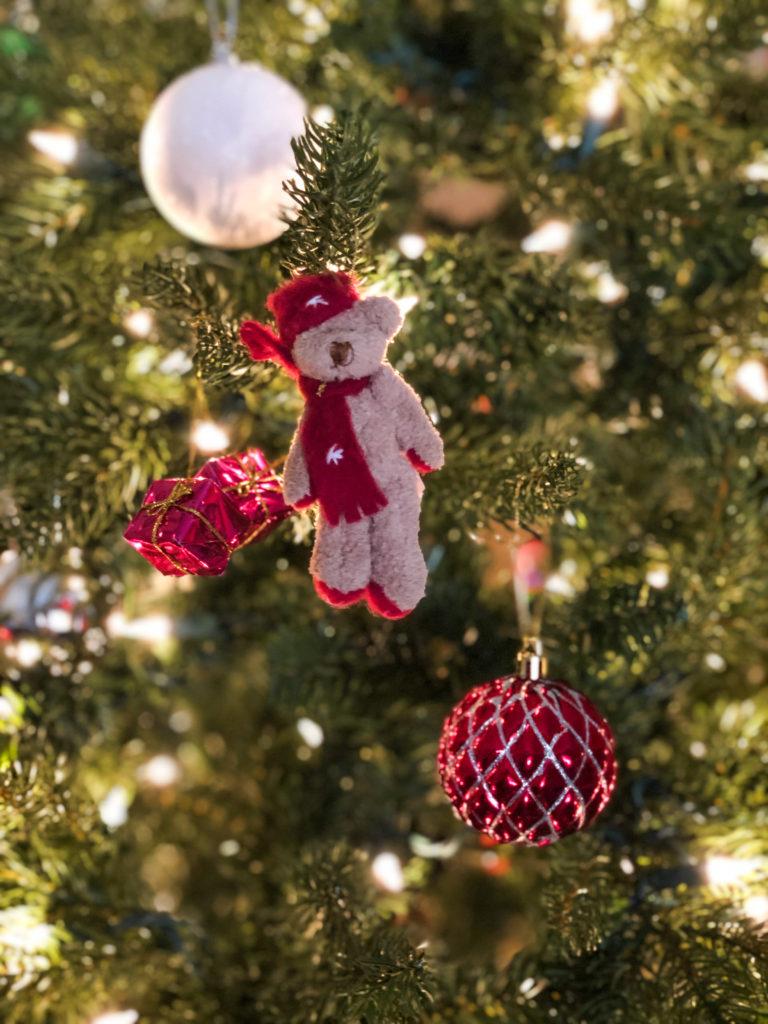 Cooper's Christmas Bear